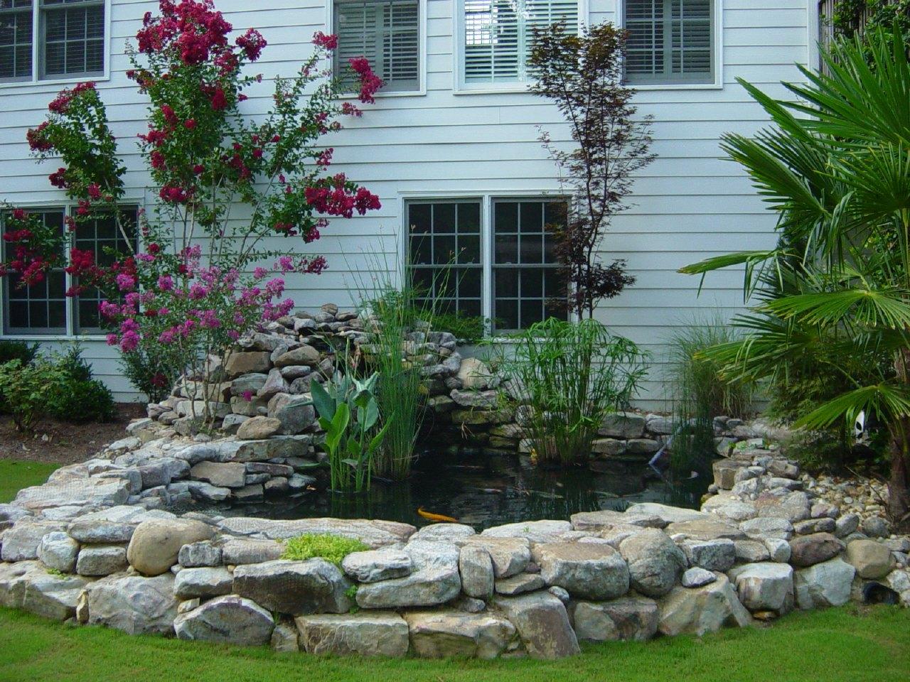 Koi pond for Plants for around garden ponds